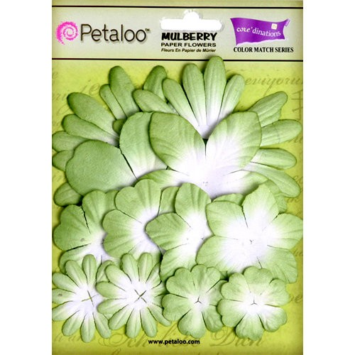 Kit de Flores Petaloo mantis green