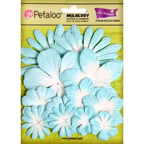 Kit de Flores Petaloo aqueduct light blue