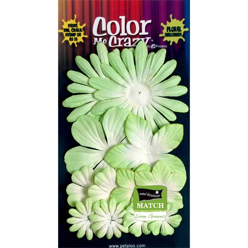 Kit de Flores Petaloo apple green