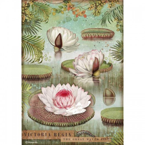 Papel de arroz A4 Amazonia Water Lily - Stamperia